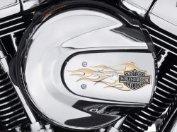FLAMES-COLLECTION-GOLD-CHROME-Air-Cleaner-Trim-Fits-16-later-Softail-61300222